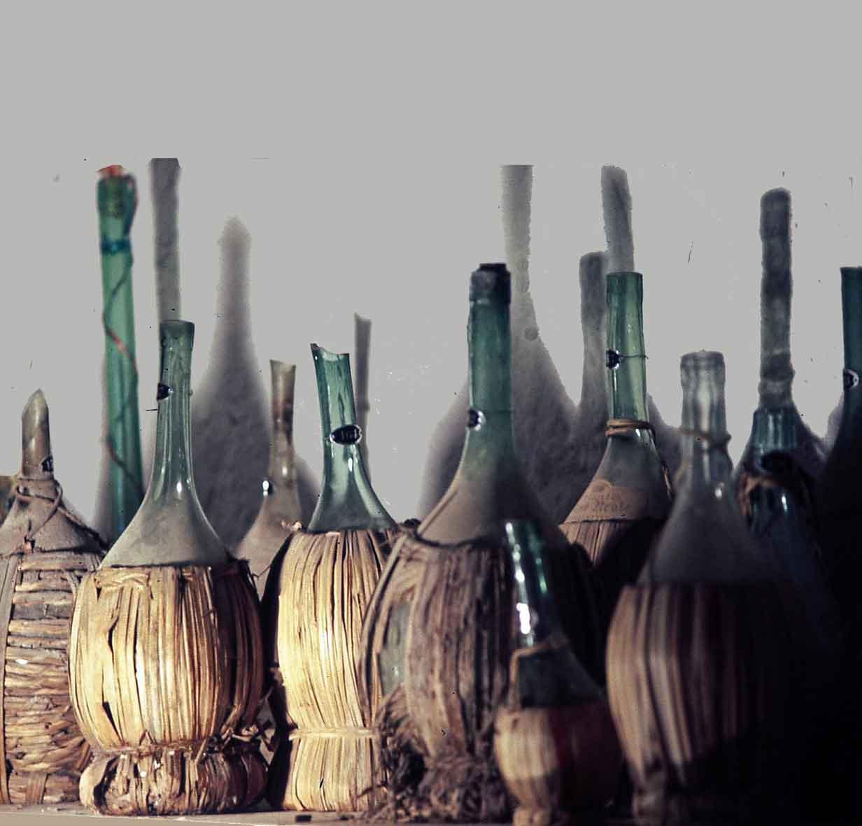 Museo Del Vino.Museo Della Vite E Del Vino